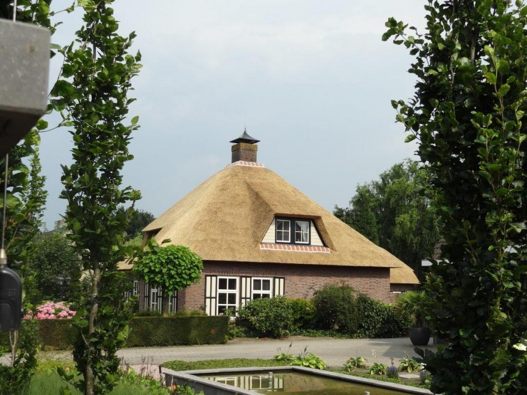 Rieten daken brandvertragend maken